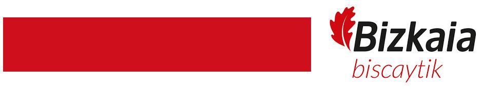 Logo Biscaytik